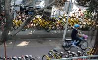 共享单车行业风雨飘摇