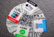 因地制宜,中国支付巨头海外搭建本土支付平台