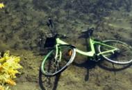 Gobee.bike一年未实现盈利  结束香港业务