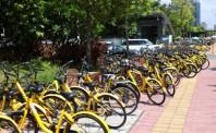 共享单车海外或是个伪命题