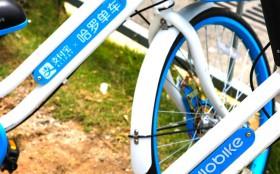 哈罗单车就员工损毁青桔共享单车一事致歉