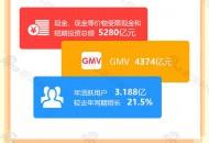 一张图看懂京东财报:净利下滑51% 6·18下单1592亿