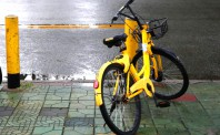 传滴滴意将ofo替换成自家品牌青桔单车