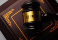 北京互联网法院两天共接立案申请207件