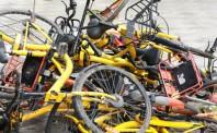 广州将继续压减摩拜ofo单车数 明年或考虑引入新企业