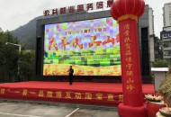 """宁陕县举办电子商务丰收节暨""""宁陕山珍""""推介活动"""