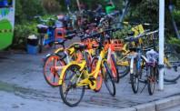 """深圳大规模""""清占""""废旧单车 共享单车减至60余万辆"""