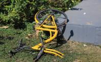 由于未启用QR码停车系统 ofo被暂时吊销营业执照