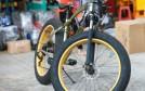 过于依赖共享单车   凤凰自行车业绩现波折