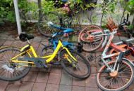 广州共享单车公开招标 将确定3家企业配额40万辆