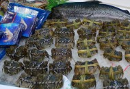 新華都1元轉讓海物會 預計產生損失577萬元
