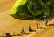 外媒:叮咚买菜完成3亿美元融资 估值达20亿美元