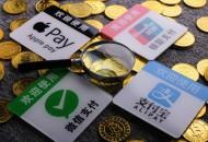 中国互联网发展报告发布  网络支付用户规模达6.33亿