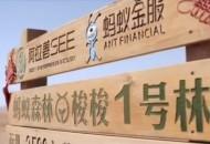 """支付宝蚂蚁森林获联合国2019年""""地球卫士奖"""""""