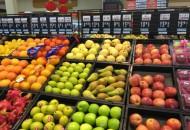 全国首个生鲜供应链平台成立