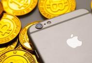 苹果CEO库克2019财年总收入达1.25亿美元