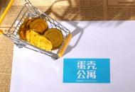 蛋壳公寓:将返还无法返城的武汉租客一个月租金