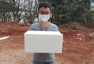 不为分文!云南小伙开个微店为农民们卖出40吨青枣