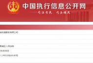 申通全资子公司杭州申瑞快递被列为被执行人