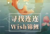 """连连面向全网发起""""寻找连连Wish锦鲤活动"""""""
