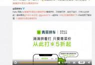 """滴滴拼车宣布更名为""""青菜拼车"""" 启用全新品牌标识"""