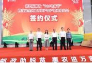 """中国邮政+拼多多,""""919电商节""""会是下一个""""双11""""么?"""