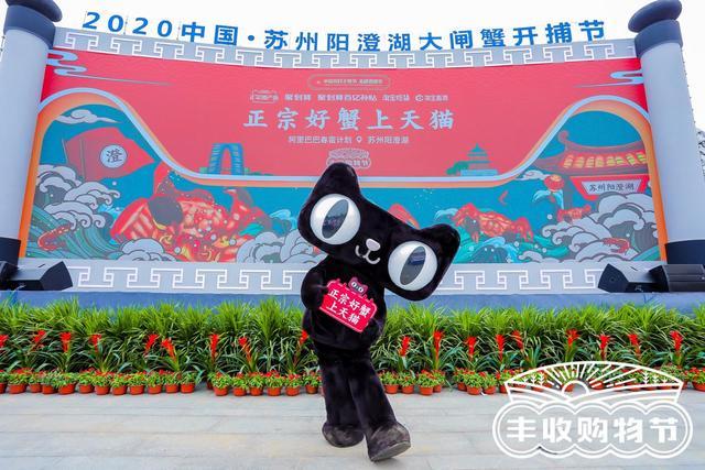 <b>阳澄湖第一篓大闸蟹再次花落天猫,打造正宗原产地天猫丰收购物节·阳澄湖站</b>