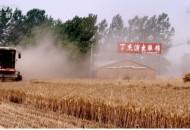 百万农民逆袭史:靠一根网线,由贫困县到遍地是富豪,年销7000亿
