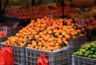 一亩田:沙糖桔采购热度将大幅上升