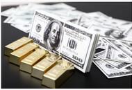 印度统一支付接口11月1日-15日完成11亿笔交易