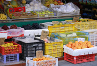 黑龙江消协:近2成消费者每天用社区团购平台下单